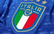 Tommasi jadi Presiden FIGC