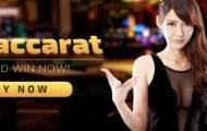 Banner Bid Baccarat SUNBET Macau303