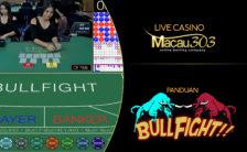 Panduan Cara Bermain Judi Bullfight di Macau303